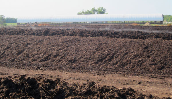 feedlot waste managment