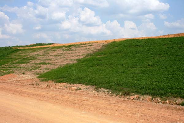 composting biosolids 2